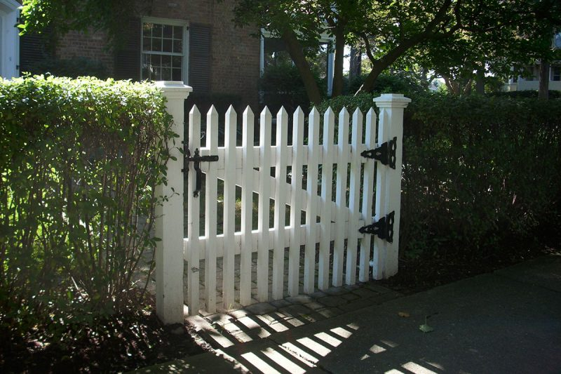 Photo of wood fence - First Fence